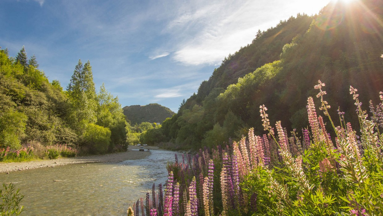 Arrow River in Summer