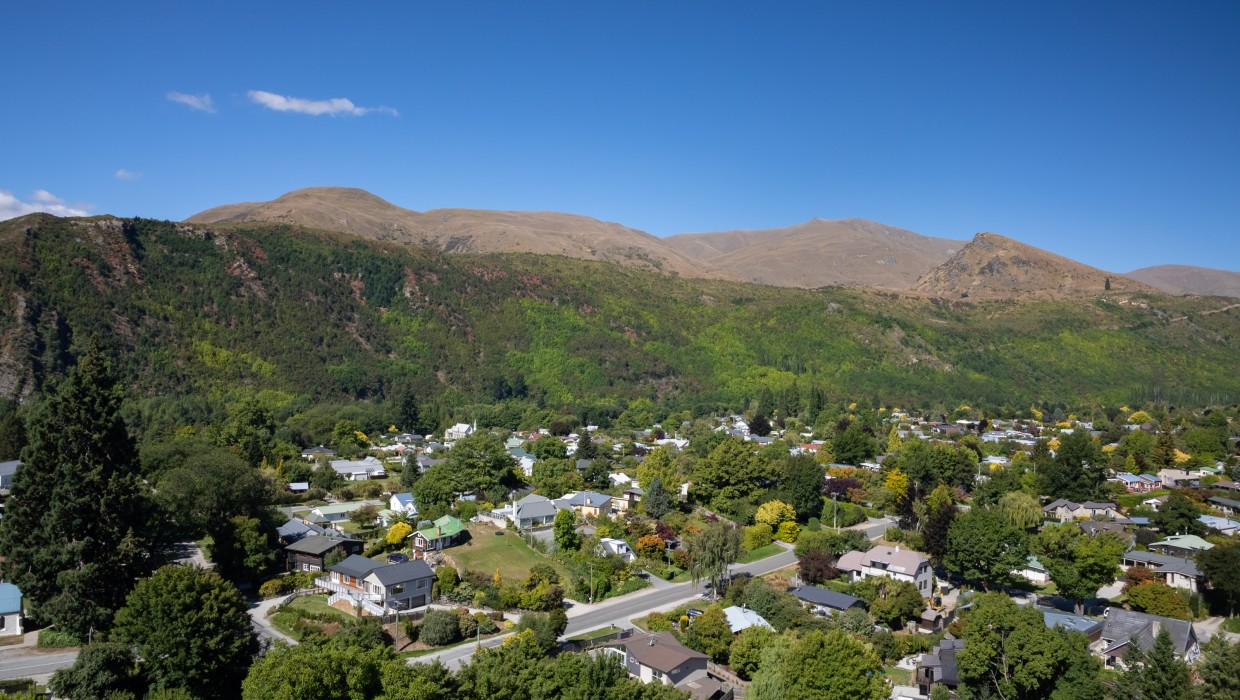Feehly Hill, Arrowtown