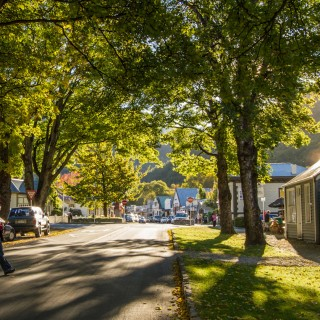 Buckingham St, Arrowtown