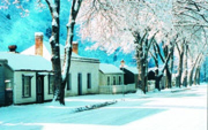 Arrowtown Cottages in Snow